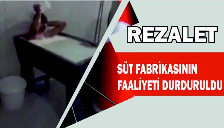 SÜT FABRİKASINDA REZALET